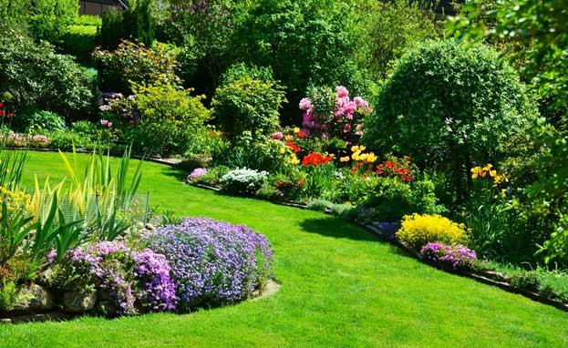 Garten mit Blumen und Sträuchern im Sonnenschein